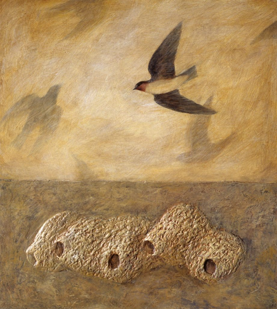 Animal Works (Cliff Swallow Nests)